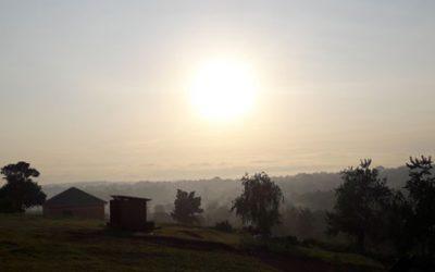 Robert's second blog from Uganda